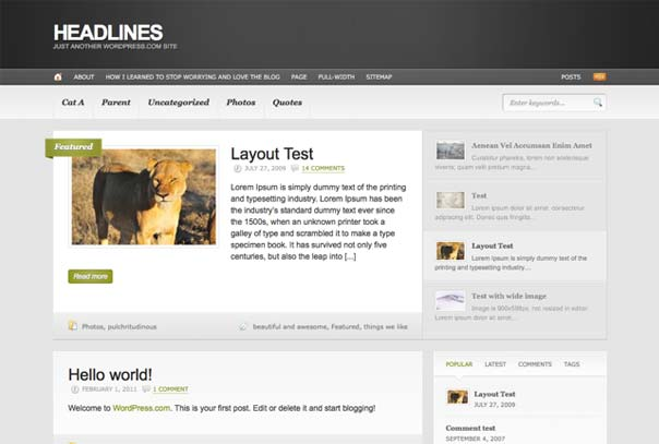 headlines premium wordpress theme woothemes