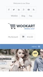 WooKart Responsive WordPress Theme